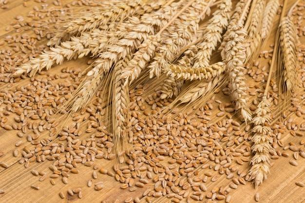 Espigas de trigo e grãos inteiros. carboidratos saudáveis. fibra dietética. fundo de madeira, close-up