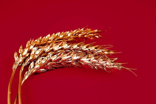 Espigas de trigo pintadas com tinta dourada sobre uma superfície vermelha.