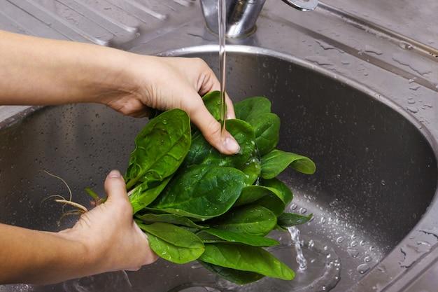 Espinafre de lavagem da mulher no dissipador. a menina está lavando o espinafre