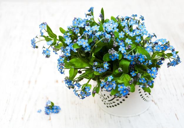 Esqueça-me nots flores