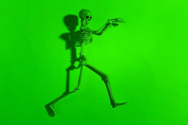 Esqueleto assustador em luz neon verde