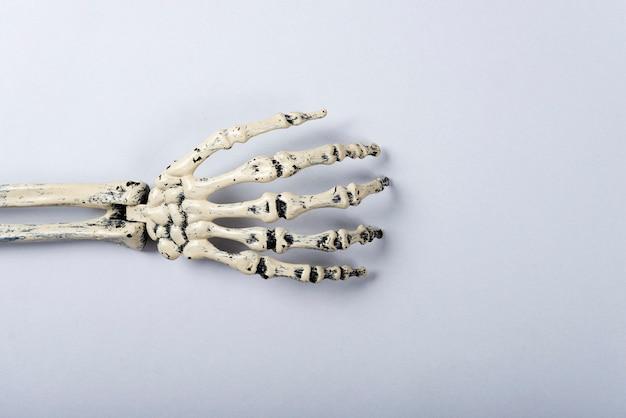 Esqueleto de braço em cinza.