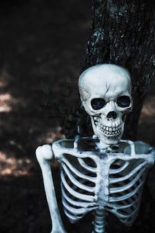 Esqueleto de brinquedo assustador na floresta