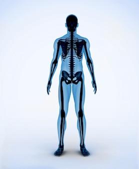 Esqueleto digital preto e azul