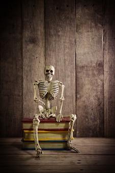 Esqueleto em madeira