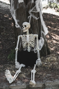Esqueleto sentado perto de árvore decorada com aranha e teia de aranha