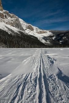 Esqui, trilhas, em, neve coberta, paisagem, com, montanha, em, inverno, lago esmeralda, campo, columbia britânica,