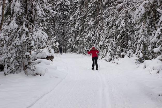Esquiador de cross country mulher na floresta em um dia ensolarado.