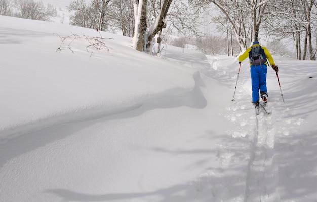 Esquiador, escalando, com, excursionar esqui