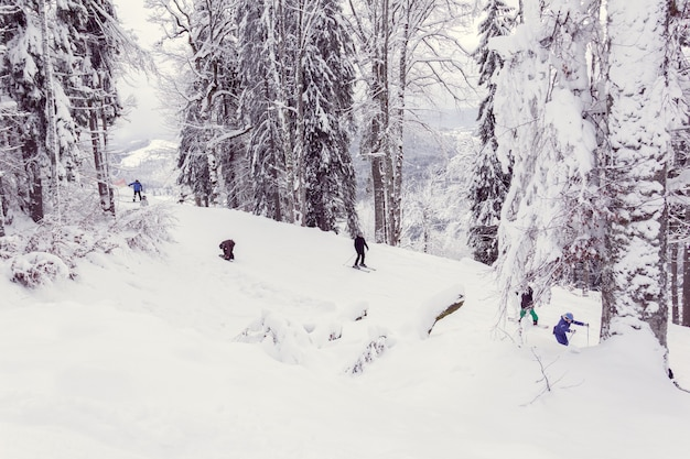 Esquiadores e snowboarders descem a montanha