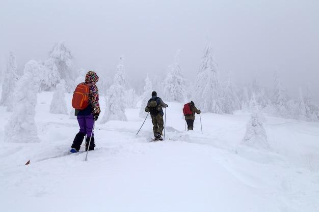 Esquiadores nas montanhas