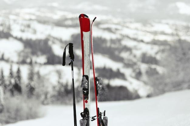 Esquis vermelhos e brancos colocam a neve com a grande vista da montanha por trás deles