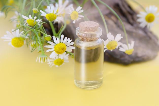 Essência, tintura de flores de camomila medicinal em uma garrafa