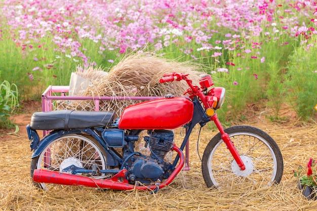 Estacionamento de motociclos no campo de flores