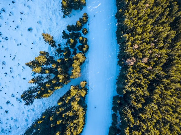 Estância de esqui. uma pista de esqui à beira de uma floresta de abetos. vista aérea
