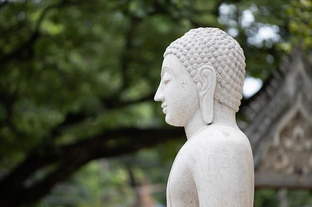 Estátua de buda em estuque no templo