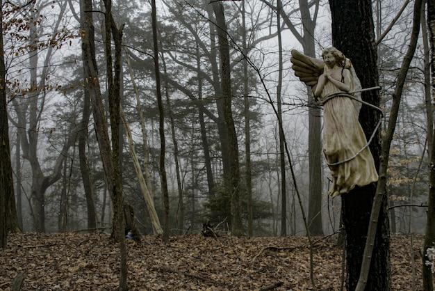 Estátua de um anjo no meio da floresta