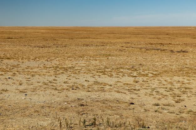 Estepe no cazaquistão, bela paisagem deserta, grama seca