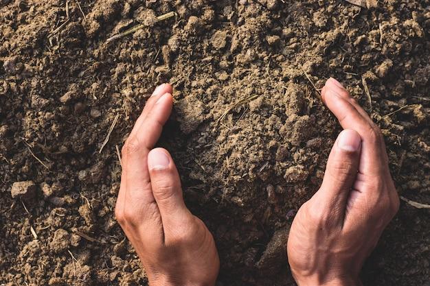 Esterco ou estrume nas mãos dos agricultores para o cultivo de plantas e árvores.