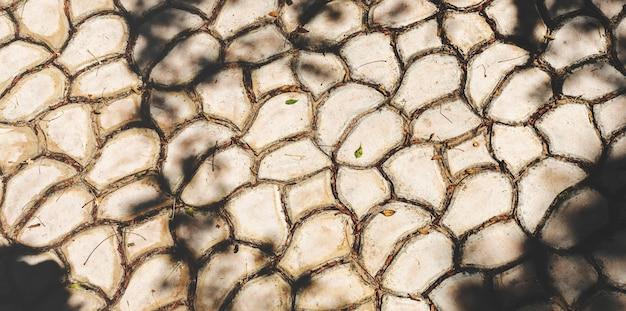Estilo de parede de trilha de pavimento rachado