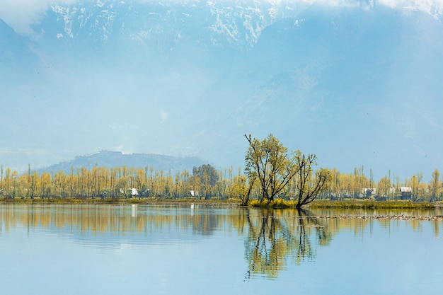 Estilo de vida aldeia local montanha fundo ao longo da fronteira do lago dal em srinagar, k
