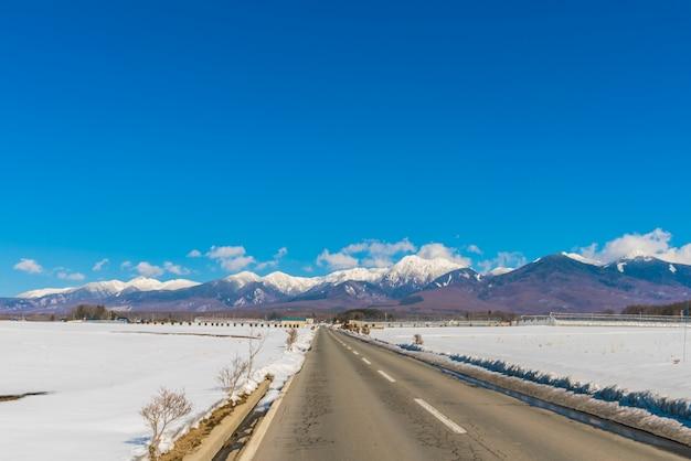 Estrada à montanha de inverno (japão)