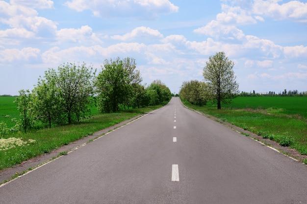 Estrada asfaltada através do campo verde na primavera