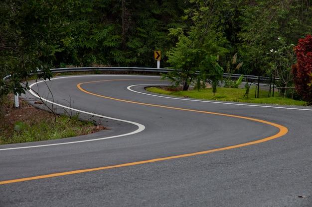 Estrada asfaltada completamente na floresta.