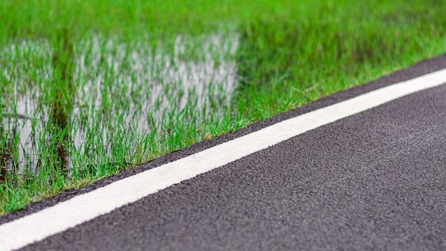 Estrada asfaltada entre o campo de grama.