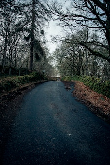 Estrada assustadora