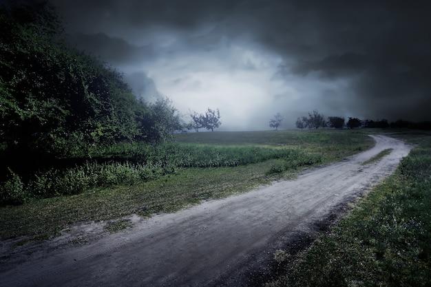 Estrada, através, a, prado, perto, poucas árvores, e, nebuloso