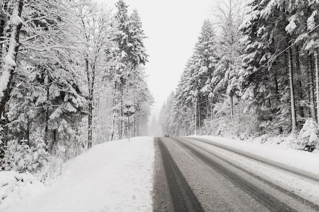 Estrada através da floresta de inverno nevada