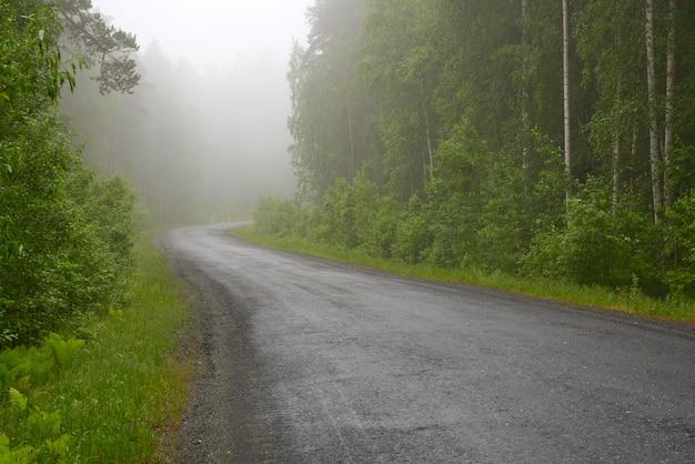 Estrada através da floresta nublada
