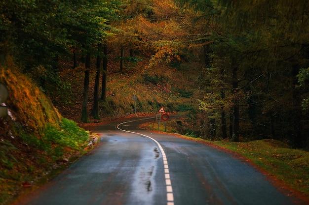 Estrada através do parque natural aiako harriak, país basco.
