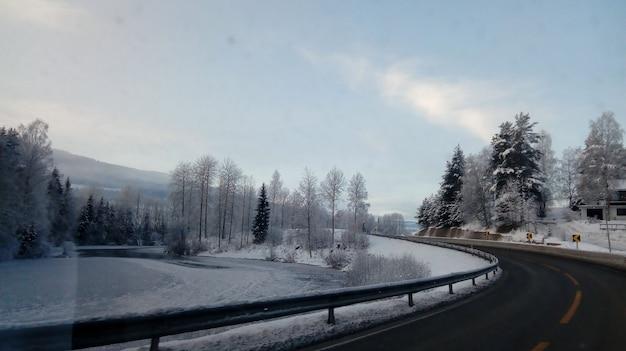 Estrada cercada por árvores coberta de neve