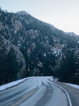 Estrada cercada por árvores