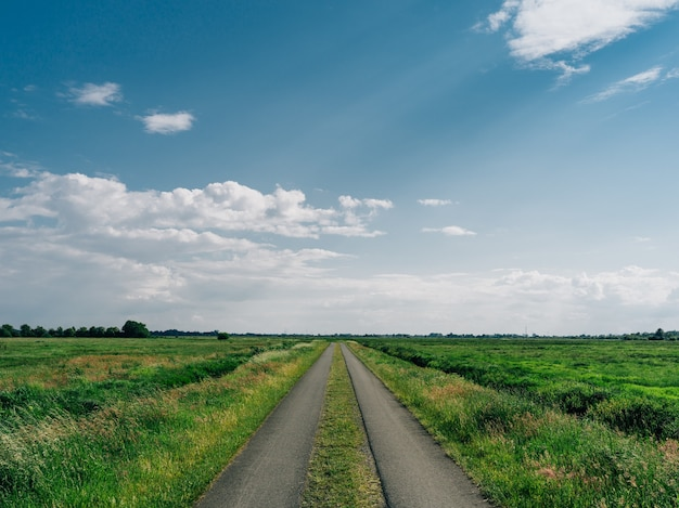 Estrada cercada por um campo coberto de vegetação sob um céu azul em teufelsmoor