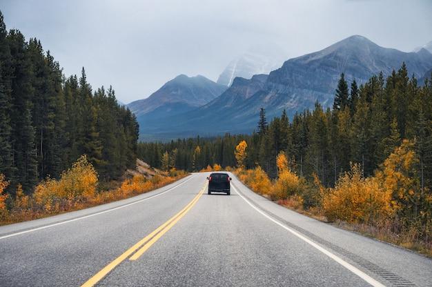 Estrada com montanha rochosa e carro na floresta de outono no parque nacional de banff