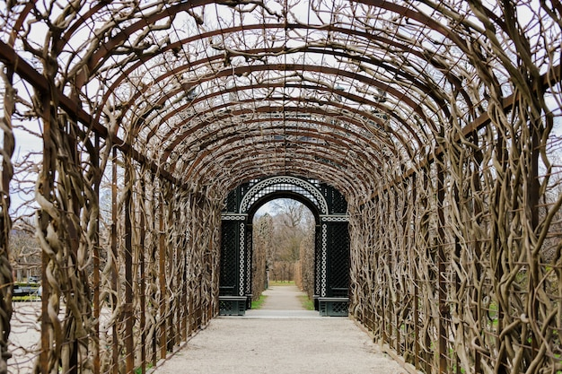 Estrada com um telhado de trepadeiras ao longo e uma porta ornamentada na parte inferior. jardins do palácio de schönbrunn.