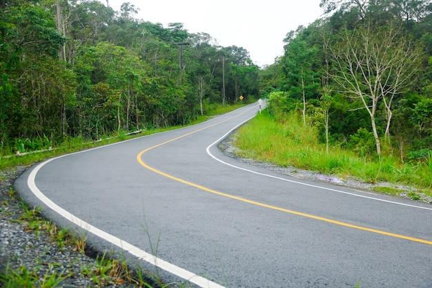 Estrada curvada até a montanha