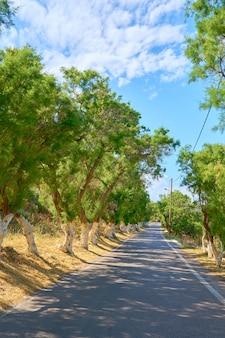 Estrada de asfalto com sombras na ilha de creta em um dia ensolarado.