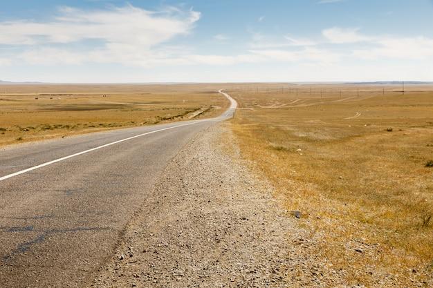 Estrada de asfalto sayshand-choir na mongólia