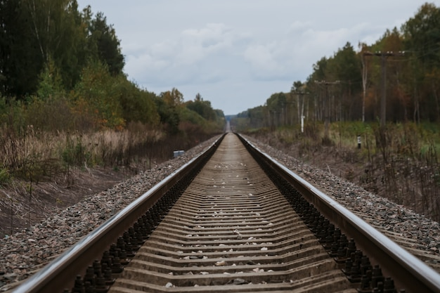 Estrada de ferro velha na floresta no outono nublado