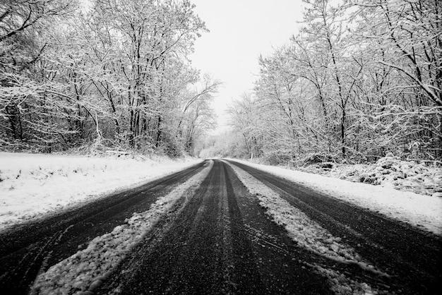 Estrada de inverno com neve no chão. viajar de maneira difícil para aproveitar a estação mais fria. imagem branca com asfalto preto em contraste. conceito de dirigir e viajar