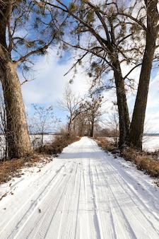 Estrada de inverno