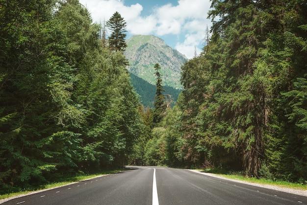 Estrada de montanha pela floresta