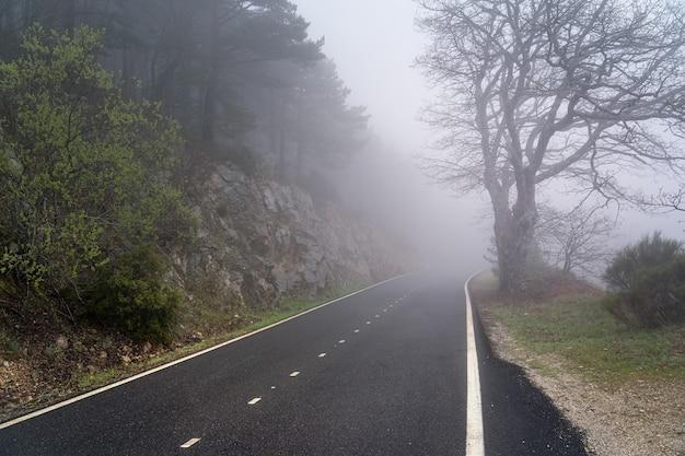 Estrada de montanha reta em um dia de forte neblina com visibilidade muito baixa. morcuera, madrid. espanha.
