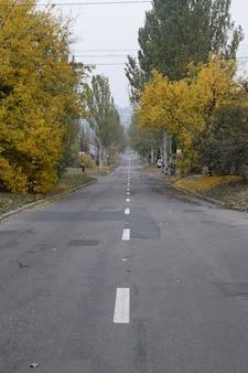 Estrada de outono. árvores com folhas amarelas e grama.
