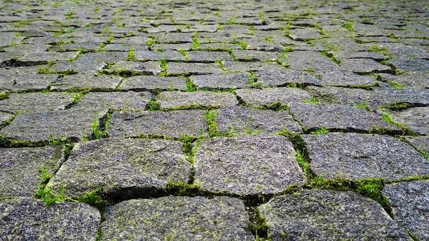 Estrada de pedra com grama verde