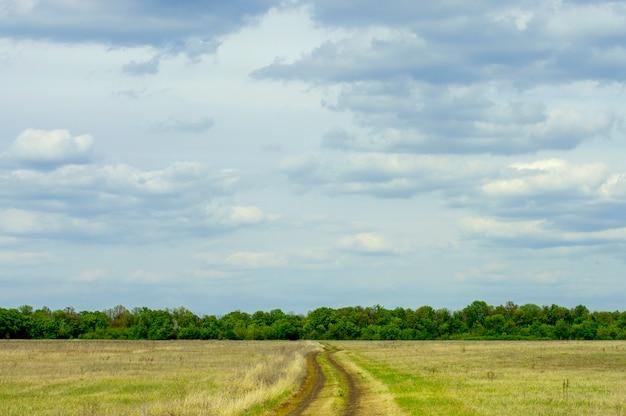 Estrada de terra contra um cinturão da floresta e céu